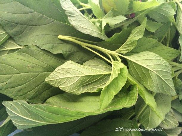 Blita - Wilde Amaranthblätter für Salat