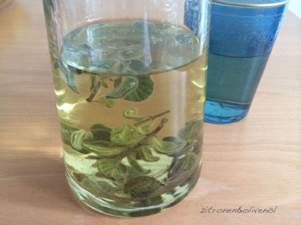 Tee aus Diktamos
