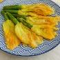 frittierte_zucchiniblueten-im-teig